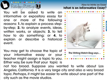 How to Write An Essay: What Is an Informative Essay? - MAC Gr. 5-8