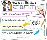How to Write Like a Scientist Anchor Chart for Little Learners