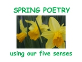 How to Write a Spring Poem Using Senses (power point /less