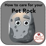 How to care for your pet rock
