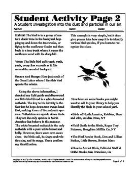 How to identify a Bird