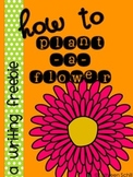 How to plant a flower FREEBIE