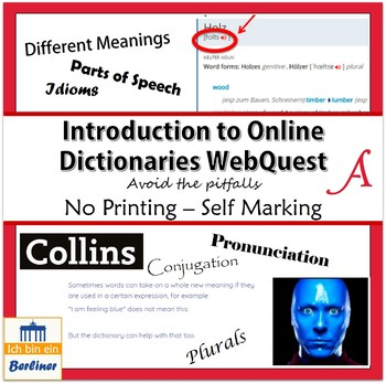How to use an Online Dictionary (Using Collins + French Examples)