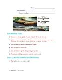 Huck Finn Model Raft Assignment