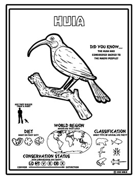 Huia -- 10 Resources -- Coloring Pages, Reading & Activities