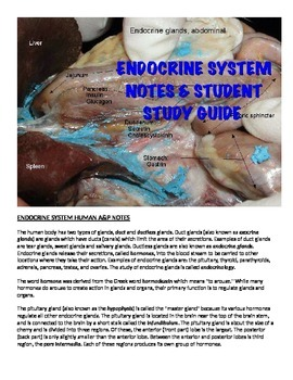 Human A&P Endocrine System Lecture notes and Student Study Guide