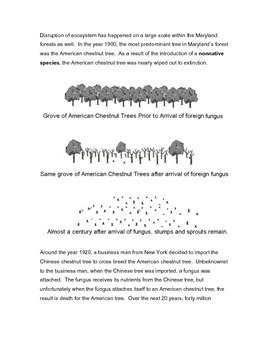 Human Activity & Ecosystem Disruption
