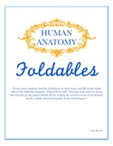 Human Anatomy Foldables Set - Includes Blank Set and Filled In Set
