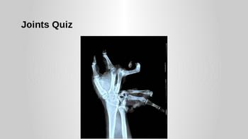 Human Anatomy Joints Quiz
