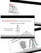 Human Anatomy - Muscle Groups Video Download