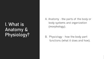 Human Anatomy & Physiology Body Structure & Terminology Presentation