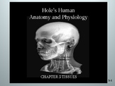 Human Anatomy & Physiology: CHAPTER 5  Tissues