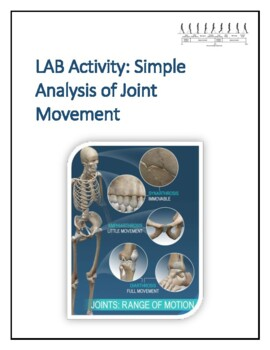 Human Anatomy & Physiology Lab Activity: Analysis of Joint ...