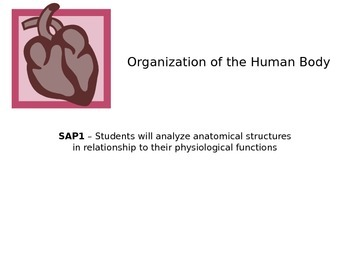 Human Anatomy & Physiology - Orientation Notes