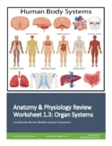 Human Anatomy & Physiology Unit 1 Review Worksheet 3: Organ Systems Overview