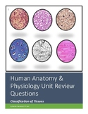 Human Anatomy & Physiology Unit 3 - Part 2 Review Workshee