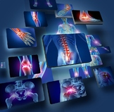 Human Anatomy & Physiology Unit 5 Bundle: The Skeletal Sys