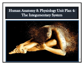Human Anatomy & Physiology Unit Plan 4: The Integumentary System