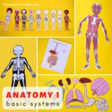 Human Anatomy: Printable Bundle for Studying Human Body Systems