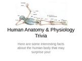 Human Anatomy Trivia PPTx
