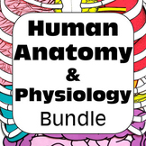 Human Anatomy and Physiology Structure and Function Bundle