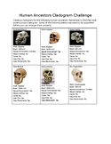 Human Ancestors Cladogram Challenge