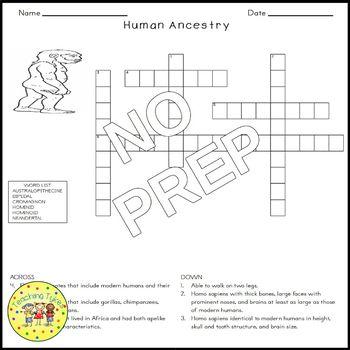 Human Ancestry Biology Science Crossword Coloring Worksheet Middle School