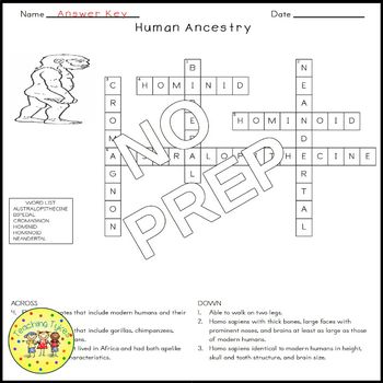 Human Ancestry Crossword Puzzle