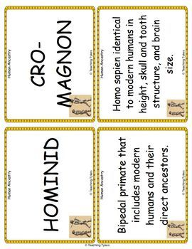 Human Ancestry Vocabulary Cards