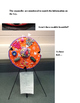 Human/Animal Cell (cross-section) Model - Detailed Instruc