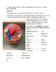 Human/Animal Cell Model (cross-section) - Detailed Instruc