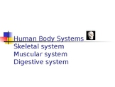 Human Body 1: skeletal, muscular and digestive systems