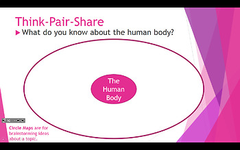 """Human Body 2-Day Powerpoint, Aligns with Flying Start Book """"Body Works"""" w/ Kagan"""