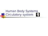 Human Body 2: circulatory & lymphatic system