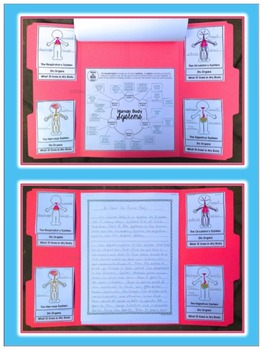 Human Body Lapbook - Research & Write About Human Body Systems