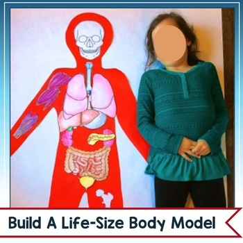 Human Body Project: A Life-Size, Lift-the-Flap Model