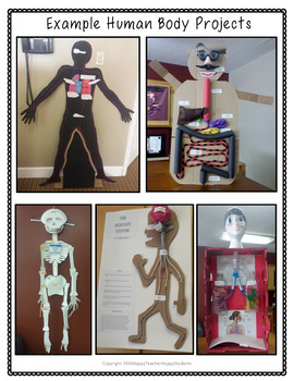 Human Body Project: 3-D Model of a Human Body System