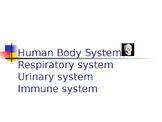 Human Body 3: Respiratory, Urinary & Immune system