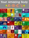 Human Body ABCs Poster