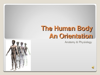 Human Body- An Orientation Notes Power Point