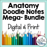Human Body & Anatomy Doodle Guided Notes Bundle - Body Diagrams