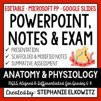 Human Body Systems Anatomy and Physiology PowerPoint, Notes & Exam