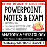 Human Anatomy and Physiology PowerPoint, Notes & Exam