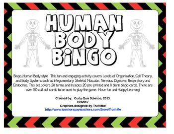 Human Body Bingo
