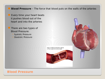 Human Body - Blood