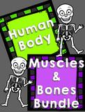 Human Body: Bone & Muscle Quiz
