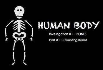 Human Body  ~ SMARTboard BONES Investigation ~ multi-day unit ~ 3rd Grade