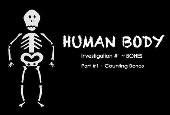 Human Body  ~ SMARTboard BONES Investigation ~ multi-day unit ~ 3rd Grade