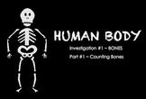 Human Body  ~ SMARTboard BONES Investigation ~ multi-day u