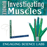 Human Body Bones and Muscle: Muscle Models and Fatigue MINI BUNDLE